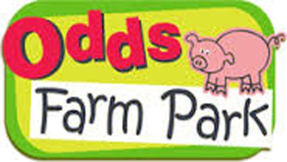 odds Farm